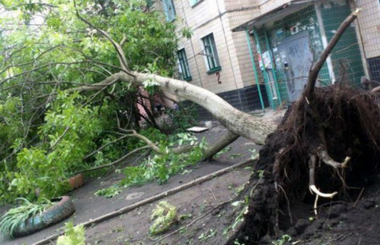 Буря на Полтавщині знесла дахи шкіл та лікарень