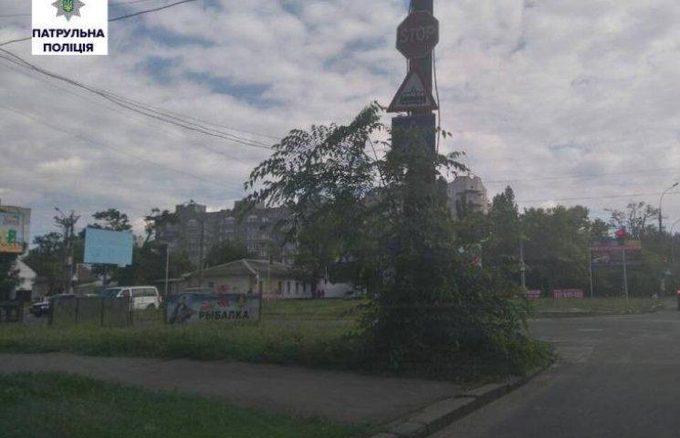 """""""Миколаївзеленгосп"""" так і не обрізав гілля, що перекриває дорожні знаки"""