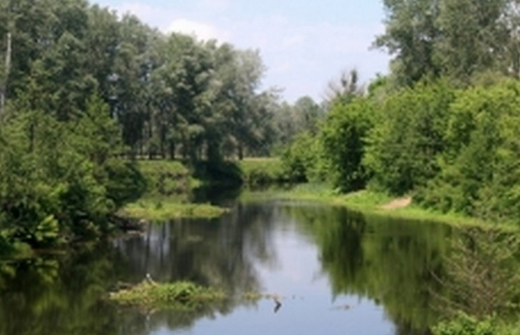 В ставку під Вороновицею втопився чоловік з Літина