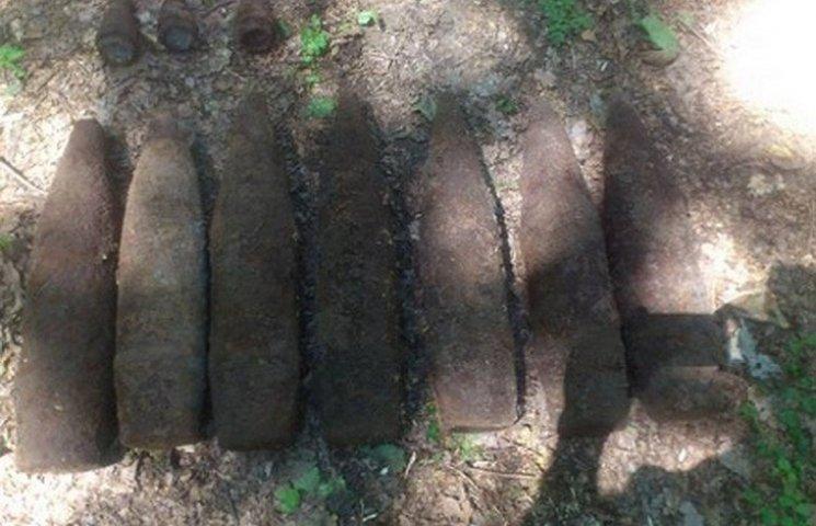 Вінничанин пішов погриби, а знайшов артилерійські снаряди