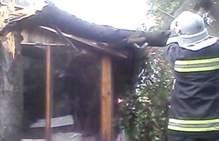 На Хмельниччині вітер звалив дерево на будинок