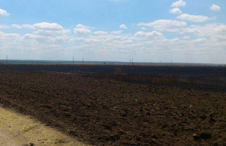 На Вінниччині на полях Порошенка згоріло 5 гектарів пшениці