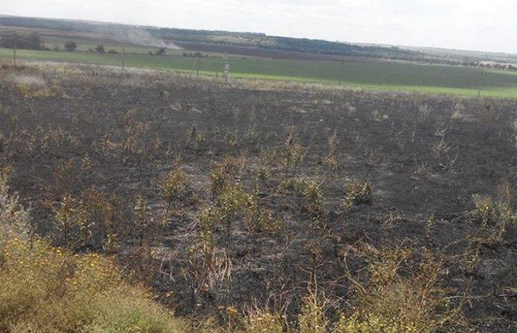 На Миколаївщині вигоріло більше 5 га сухостою