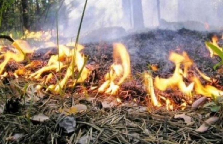 На Миколаївщині очікується підвищена пожежна безпека