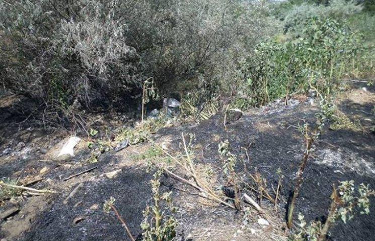 На Миколаївщині пожежа на сміттєзвалищі ледь не перекинулась на лісове урочище