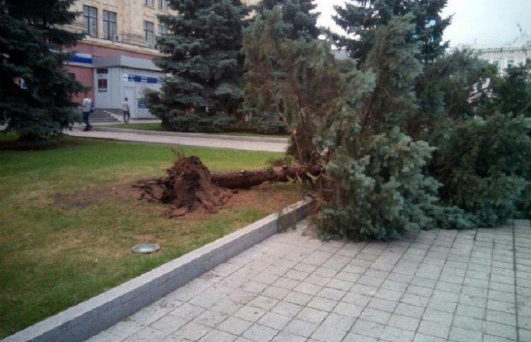 Ураган у Харкові: вирвані з коренем дерева та повалені стовпи