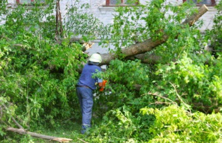Внаслідок негоди на Полтавщині знеструмленими лишилися 14 населених пунктів