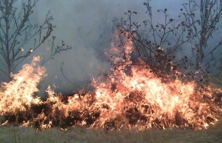 На Миколаївщині через спеку та людську недбалість загорілось 14 га територій