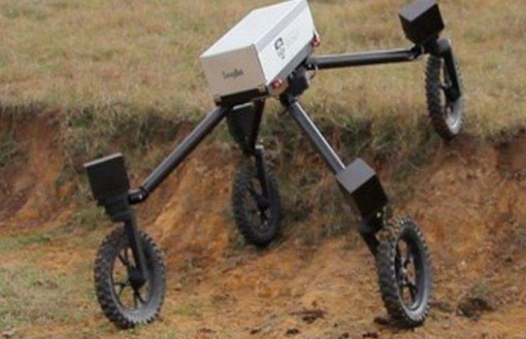 Первый в мире робот-пастух появился в Австралии