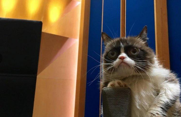 Як Сердитий Котик милувався пам