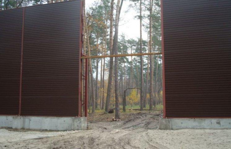 """""""Антипопулисты"""": Чтобы спасти приирпенские леса, их надо сделать заповедником"""
