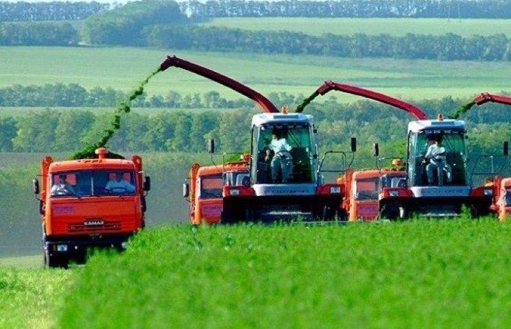Сільгоспвиробники Хмельниччини скоротили випуск продукції більш як на 7%