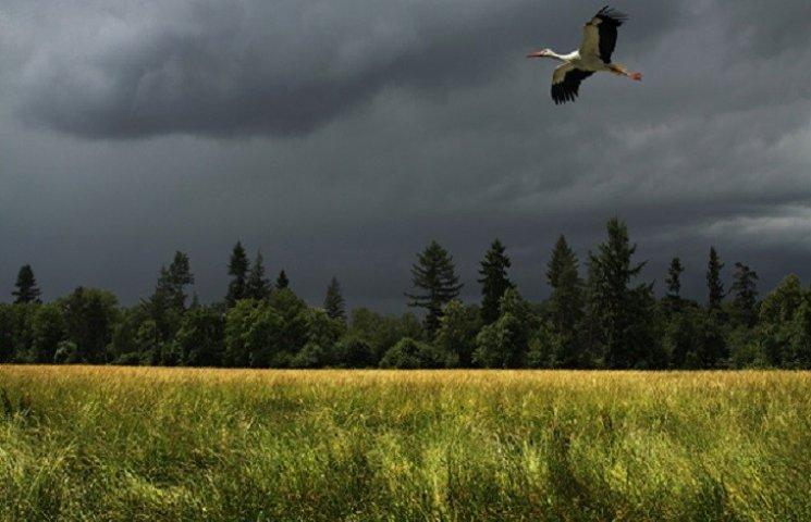 У Хмельницькому зранку буде ясно, але вдень обіцяють зливу і град