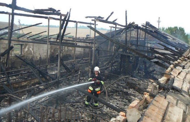 На Хмельниччині ще одна свиноферма згоріла разом зі свиньми