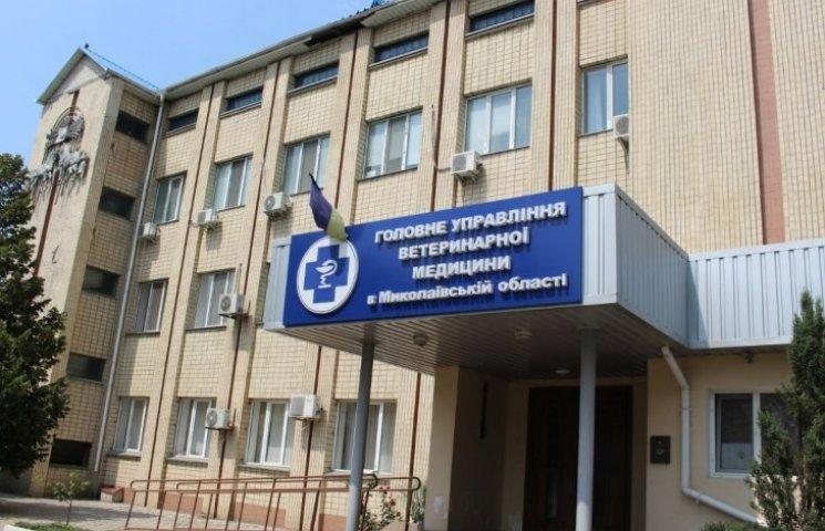 На всіх виїздах з Нової Одеси встановлять дизбар