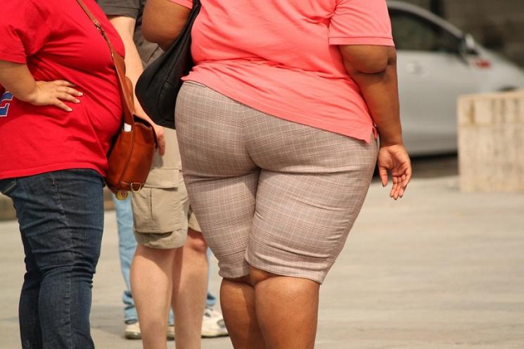 Россиян, страдающих ожирением, за пять лет стало вдвое больше
