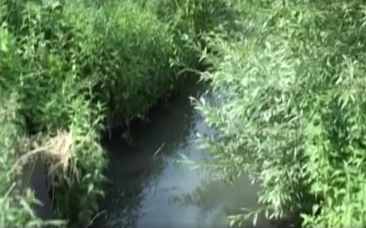 Знущання над Південним Бугом: Чому хмельницький мер не знає, хто отруїв річку