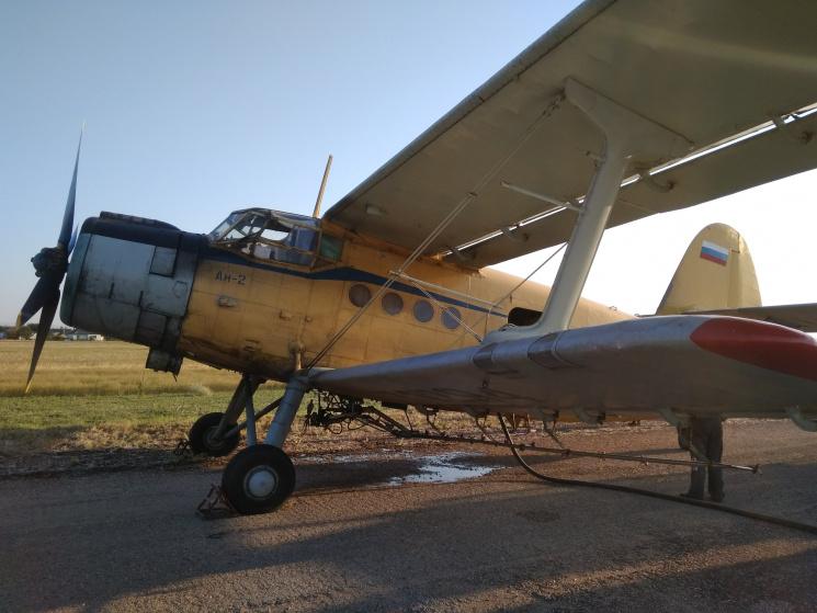 Окупанти натравили на сарану в Криму літак в національних українських кольорах