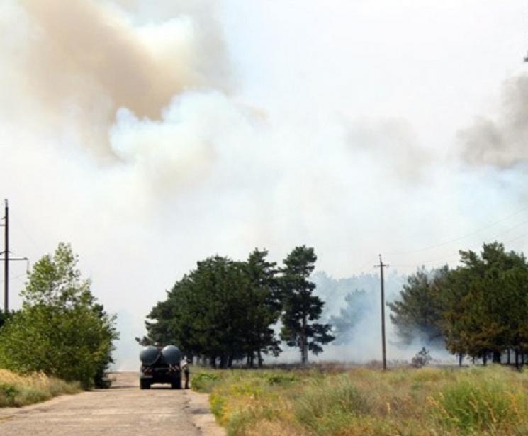 Як гасять лісову пожежу на Херсонщині, що впритул наблизилася до міста