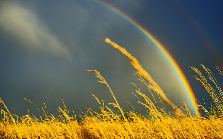 Спека, дощі та грози - прогноз погоди на Прикарпатті на 22 липня