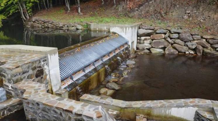 У Держагенстві водних ресурсів проти міні-ГЕС на Закарпатті