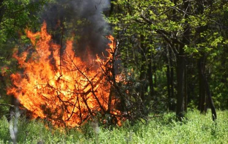 Закарпатців попереджають про пожежну небезпеку