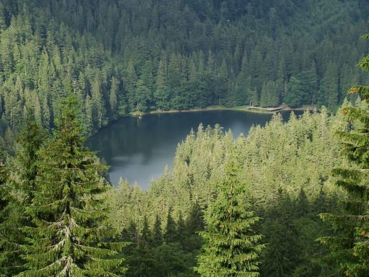 Екскурсії відпадають: Вхід до озера Синевир тимчасово заборонять