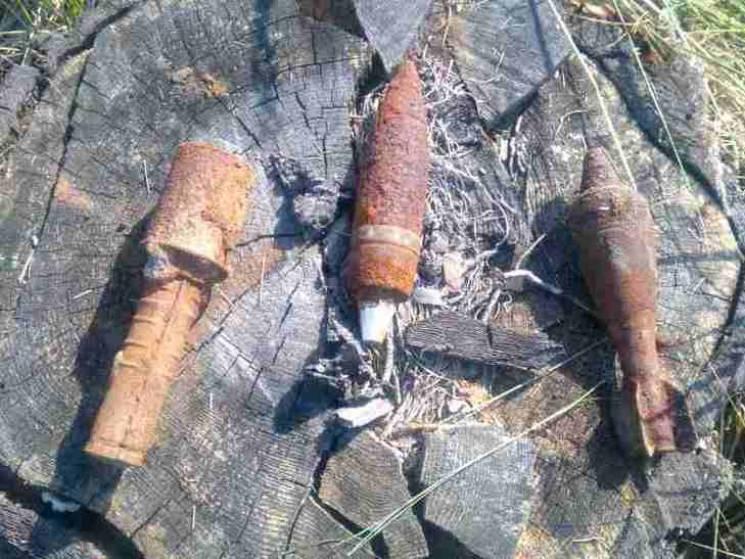 Сумчани продовжують знаходити боєприпаси у себе під ногами (ФОТО)