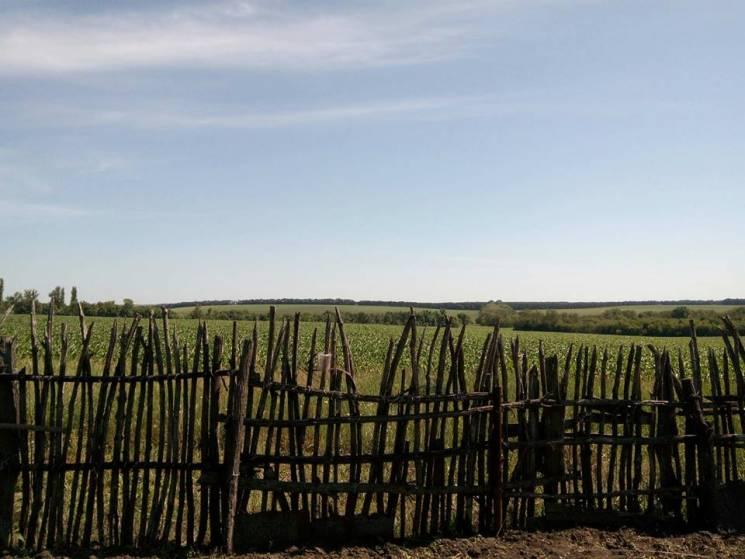 """На Полтавщині тривають земельні """"війни"""" між прокуратурою і фермерами"""