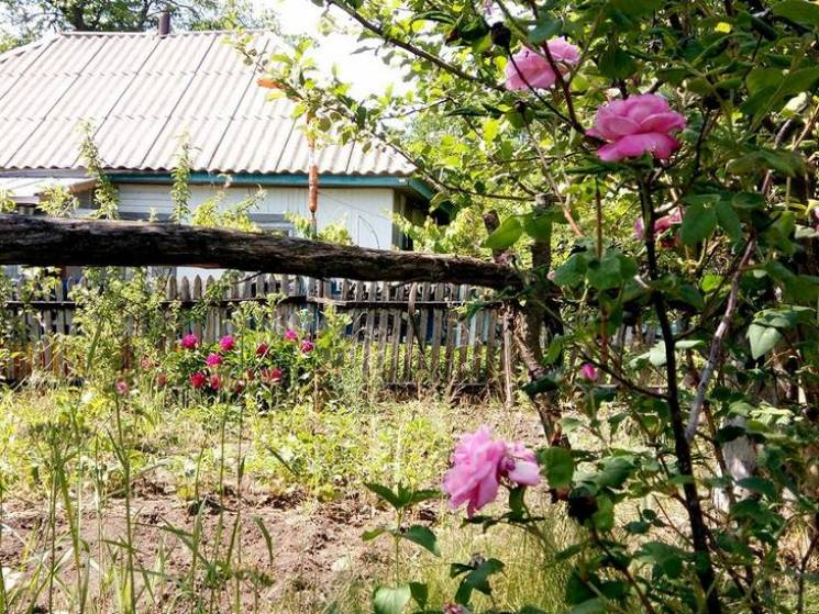 На Полтавщині селянин загинув від випарів каналізації на власному подвір'ї