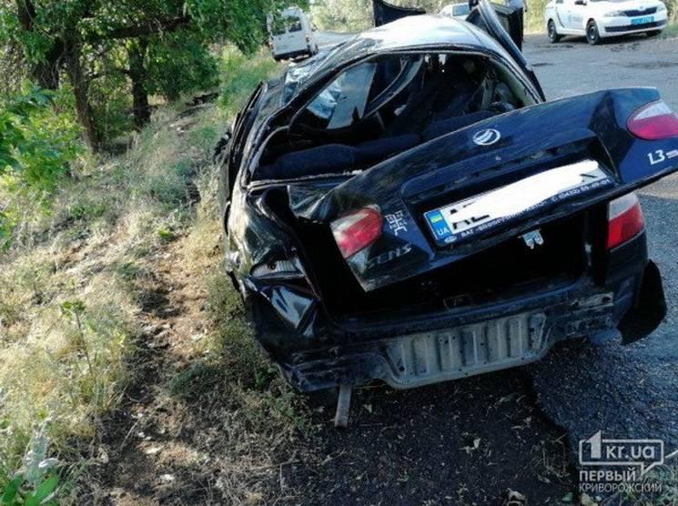 Біля Кривого Рогу автівка перекинулася й розбилась об дерево
