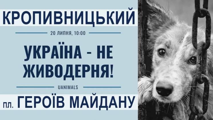 """У Кропивницькому відбудеться акція """"Україна - не шкуродерня!"""""""