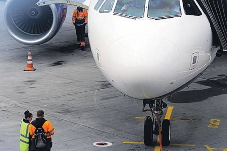 На Росії собака відчинила багажний відсік літака просто в небі