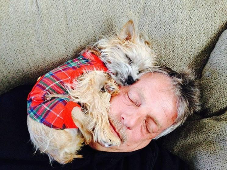 Настрій понеділка: 20 смішних собак, які нікуди не хочуть виходити з дому (ФОТО)
