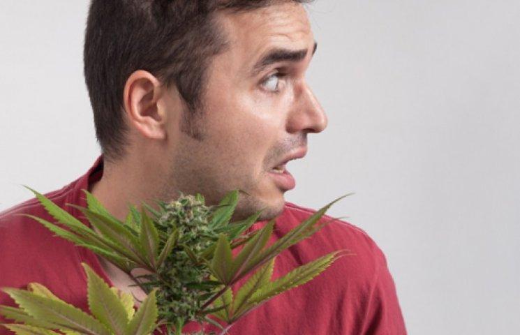 Марихуана вызывает бесплодие закон о употреблению марихуаны
