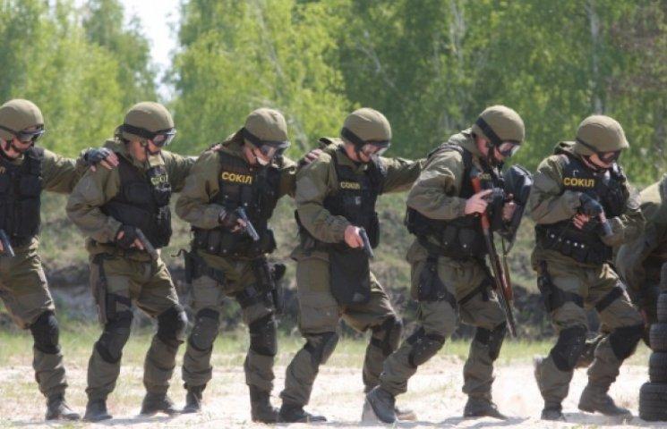В Украине появится четвертый вид вооруженных сил