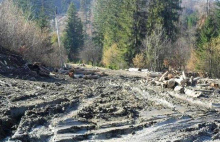 Через вирубку лісів у водозабір Воловця тече брудна вода (ВІДЕО)