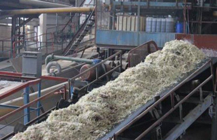 На Хмельниччиині суттєво скоротять виробництво цукру