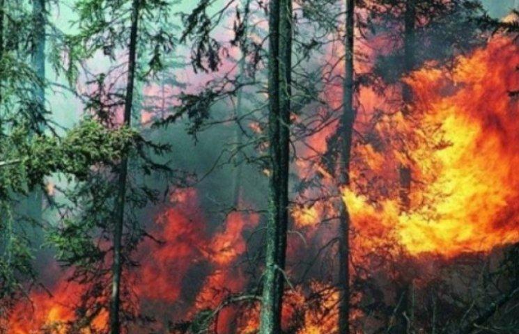 УВАГА: На Закарпатті до 15 червня діятиме найвищий рівень пожежної небезпеки