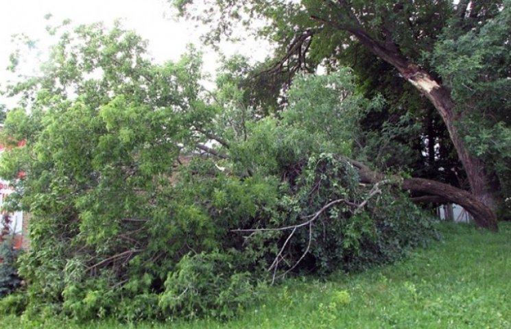 Чотири райони Хмельниччини частково постраждали від буревію