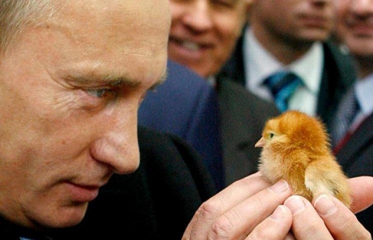 Чи виліпить Наливайченко з себе українську лайт-версію Путіна