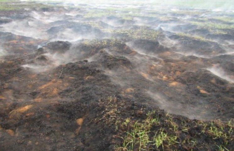 Під Києвом продовжують горіти 17 га торфовищ (ФОТО)