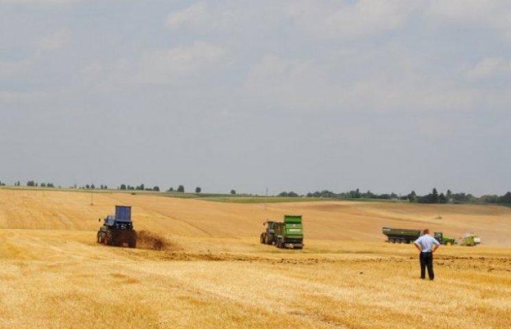 За неналежне зберігання пшениці вінницьке підприємство заплатить 1,5 мільйона гривень
