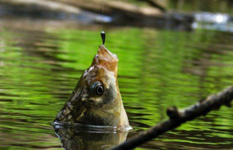 На Сумщині рибак потонув, витягуючи вудку з рибою