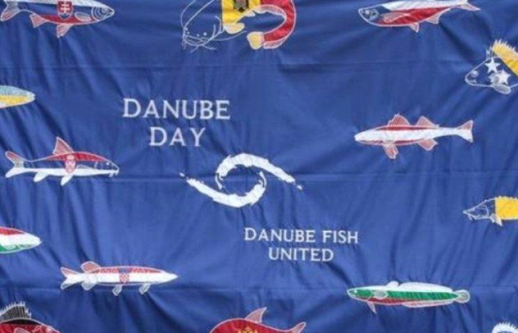 Закарпаття запрошує на День Дунаю