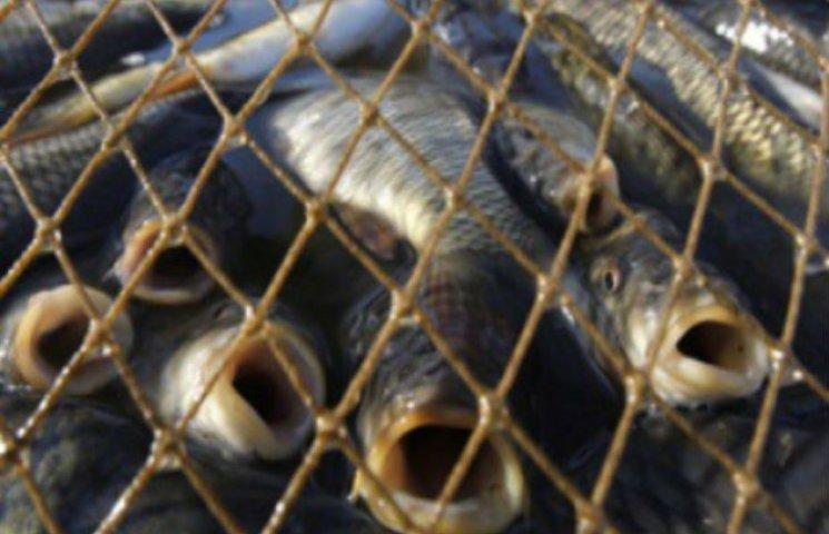 Житель Сумщини нарибалив уночі на 17 тисяч гривень