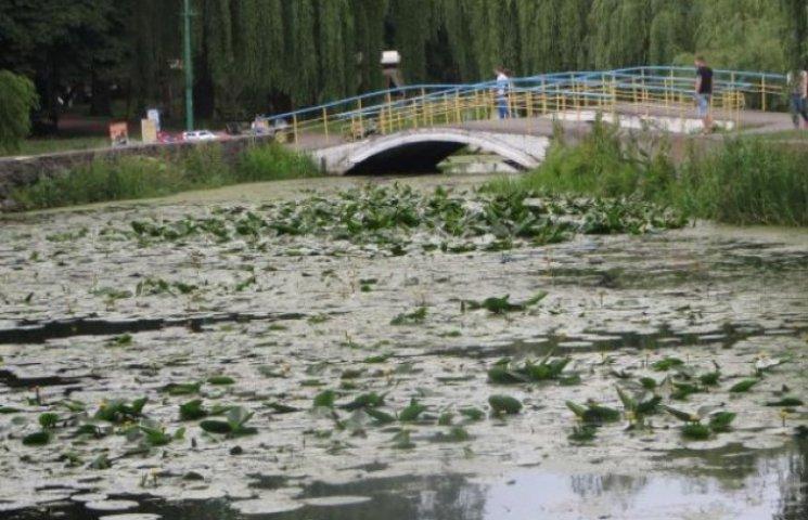 Водойми у парку ім.Чекмана стануть чистими лише восени