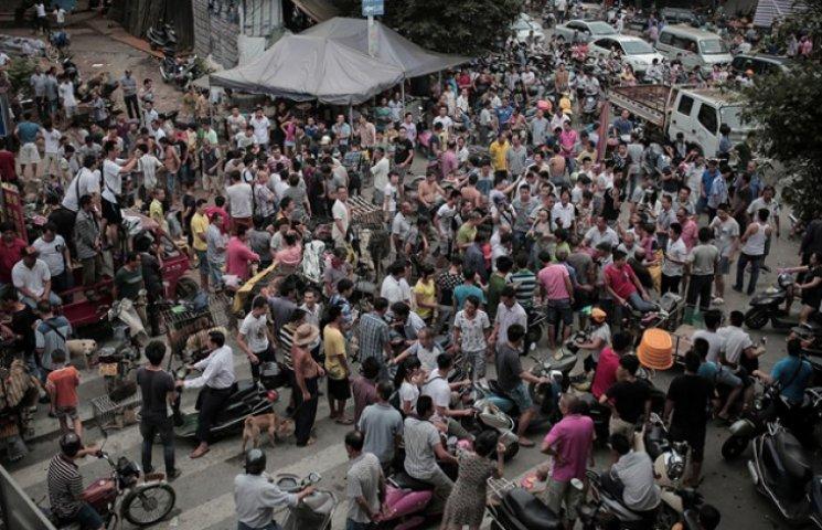 У Китаї пройшов фестиваль собачого м