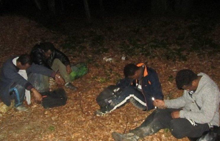 На Закарпатті затримали двох вінничан, які перевозили нелегальних мігрантів