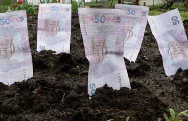 У Запорізькій області понад шість тисяч чоловік стали власниками земельних ділянок